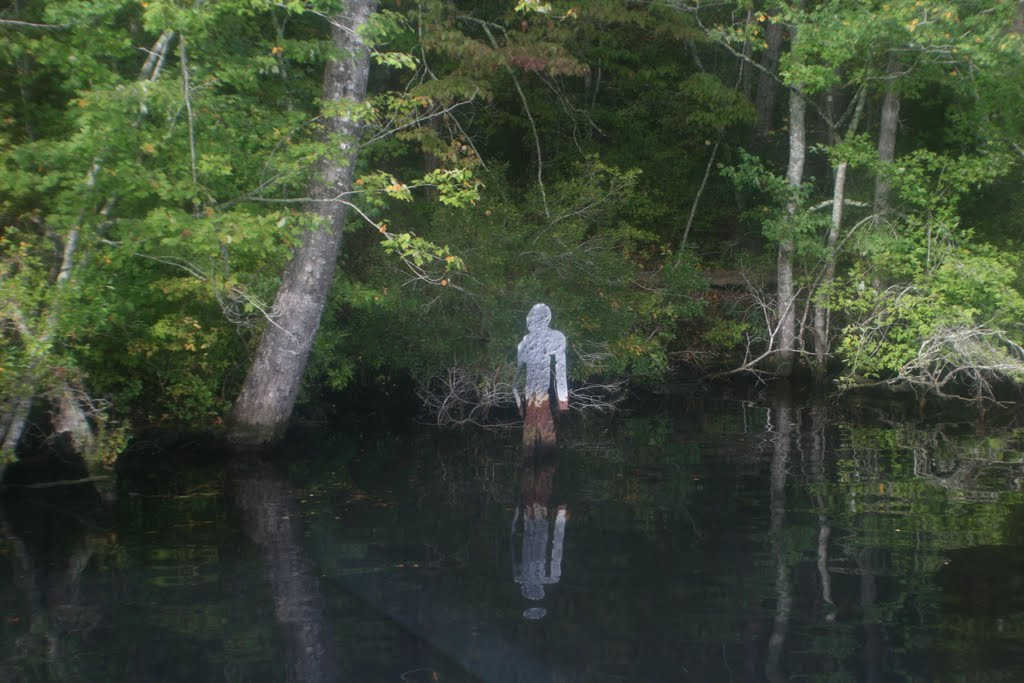 the 14 scariest things in north carolina will haunt your dreams the 14 scariest things in north