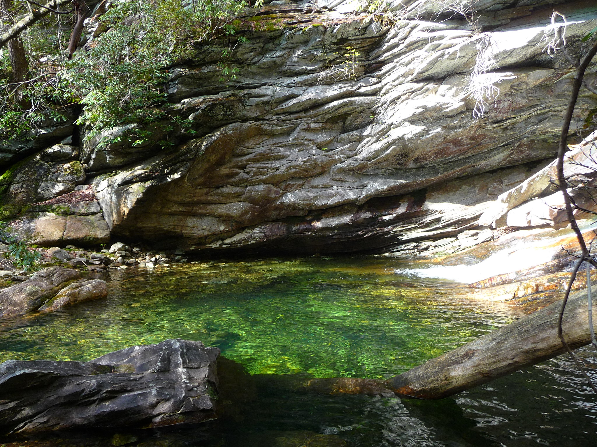 Take a Dip in Colorados Paradise Cove! - Traveling GypsyRN | Colorado travel, Paradise cove