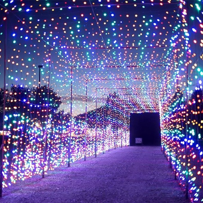 Skylands Stadium Christmas Light Show.These 14 Places In New Jersey Have The Best Christmas