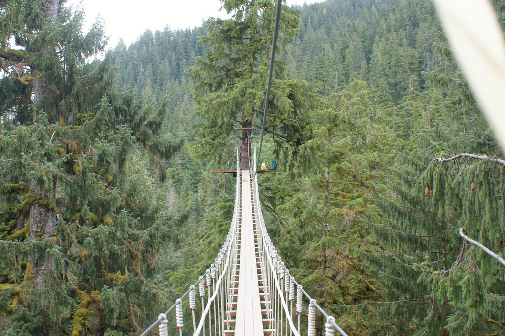 These Swinging Bridges In Alaska Are The Definition Of Adventure