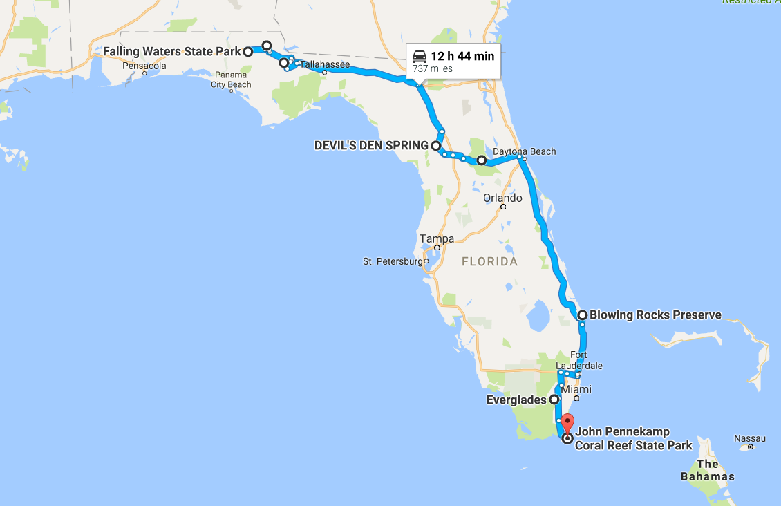This Natural Wonders Road Trip Will Show You Florida Like You've Never Seen It Before
