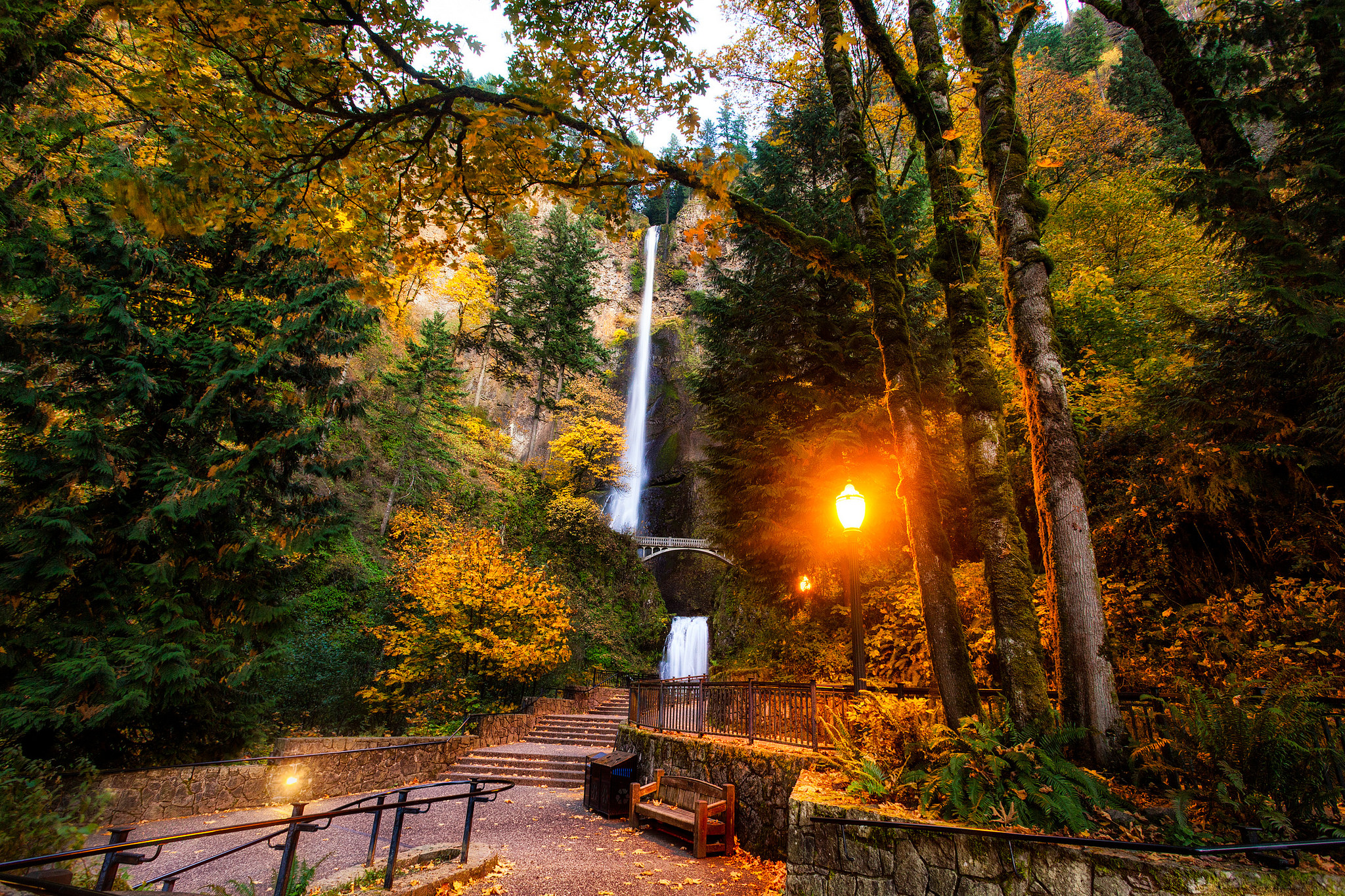 This Road Trip Takes You To The Best Fall Foliage In Oregon