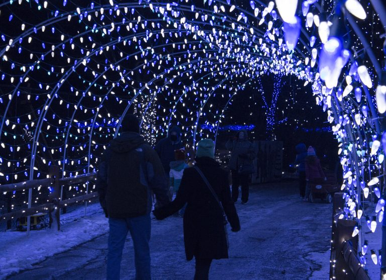 Christmas Lights In Pa.Take This Christmas Lights Road Trip In Pennsylvania To 10