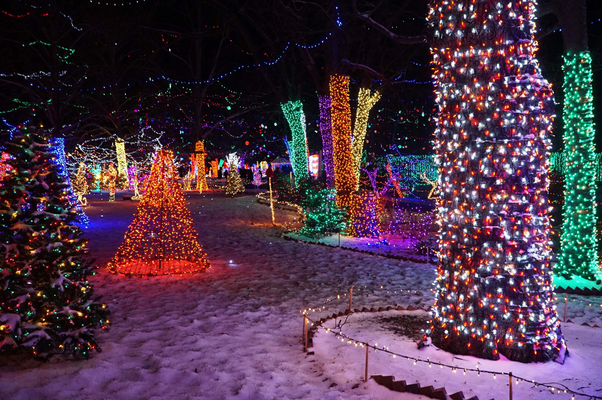 Rhema Christmas Lights.Rhema Christmas Lights The Magical Christmas Attraction