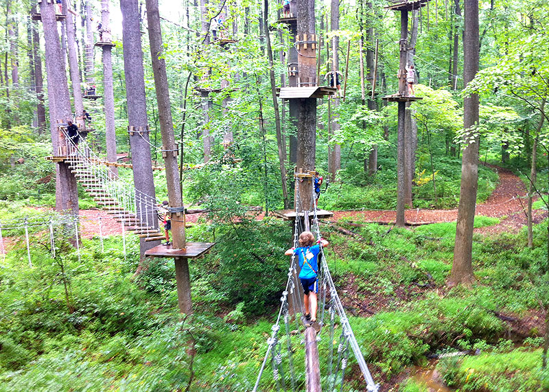 There S An Adventure Park Hiding In The Middle Of A Massachusetts