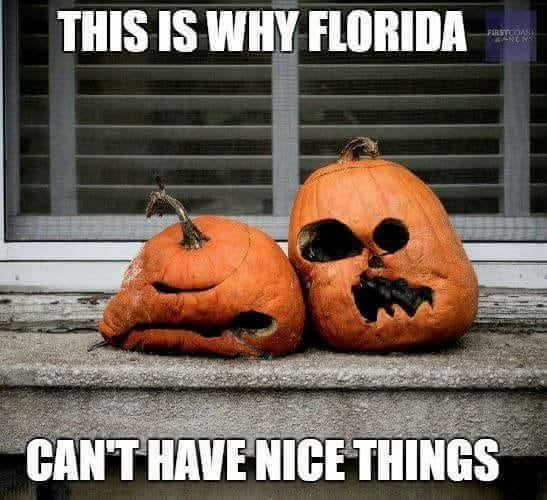 15 Downright Funny Memes You Ll Only Get If You Re From Florida