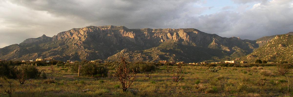 Albuquerquebanner image