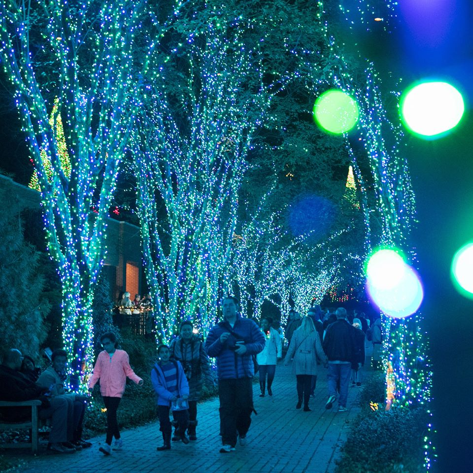 Atlanta Botanical Gardens In Georgia Offers A Unique Holiday Experience