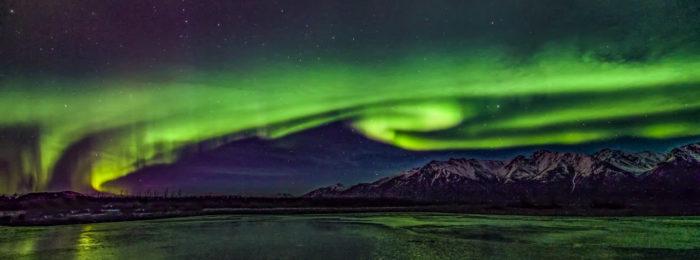 Alaska Newsletter