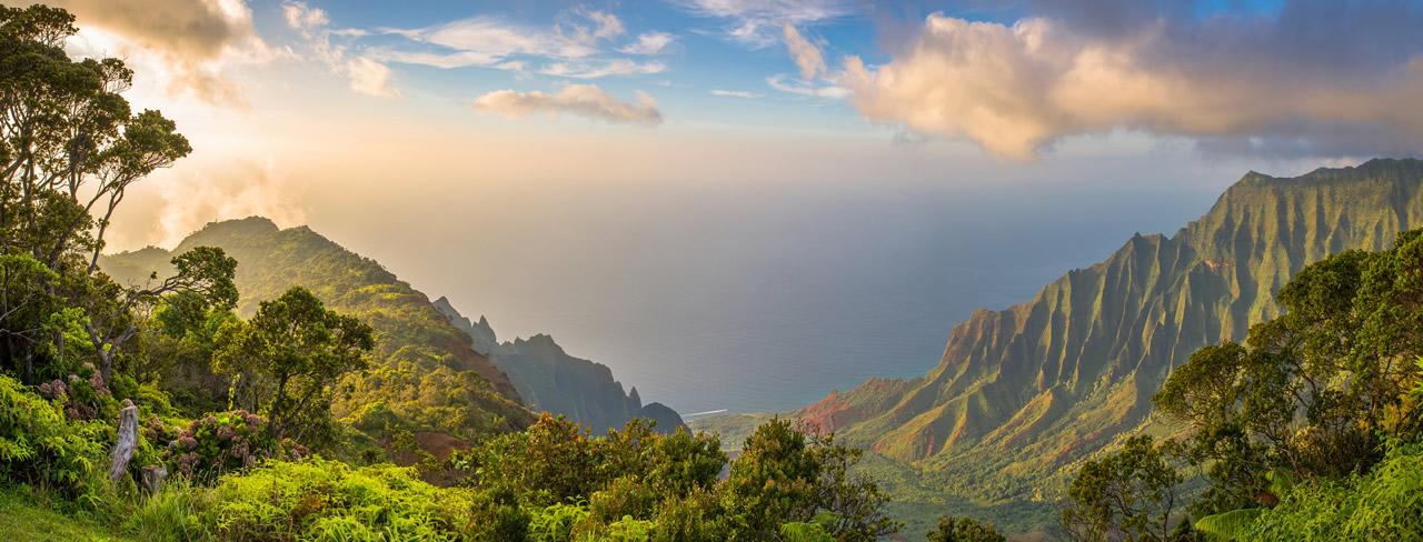 Hawaiibanner image