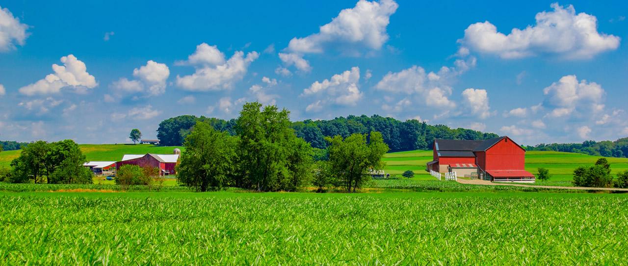 Ohiobanner image