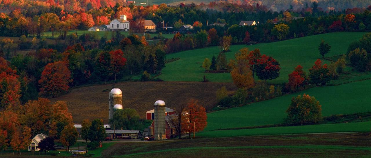 Vermontbanner image