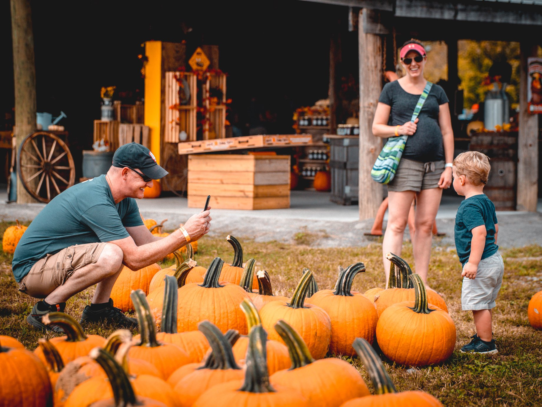 Choose From Thousands Of Pumpkins At The Charming Honeysuckle Hill Farm  Near Nashville