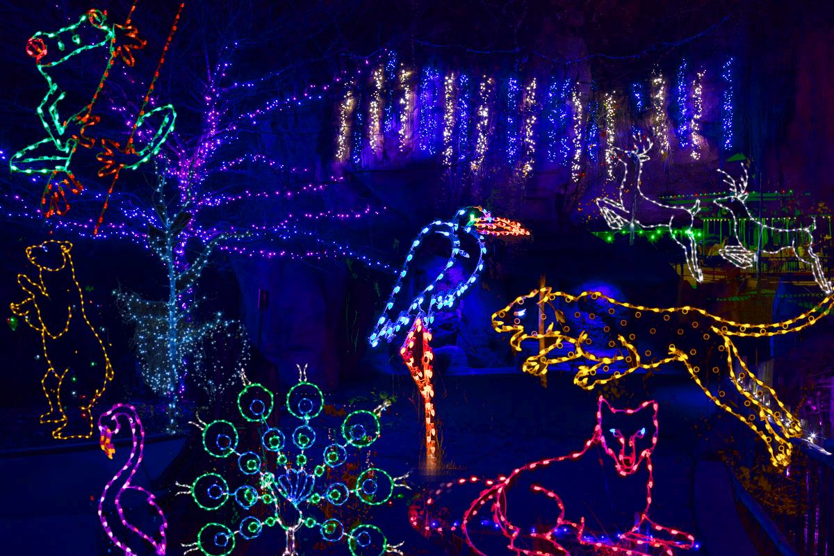 akron zoo lights 2020