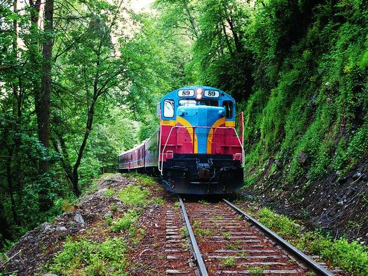 This Wine-Themed Train In Oregon Is Also A Whodunit Murder Mystery
