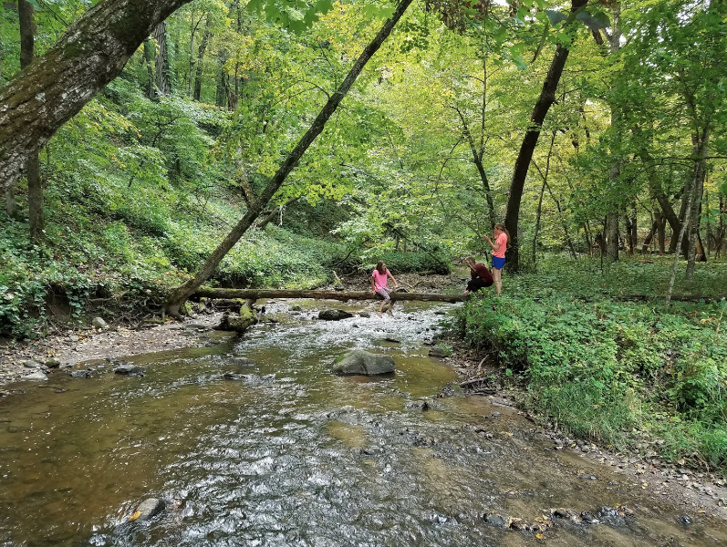 The Remote Hike To Fort Defiance In Iowa Winds Through Dense Forest And Showcases A Frontier Lodge