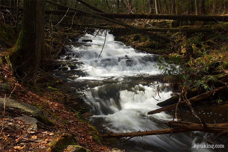 Take An Easy Out-And-Back Trail To Enter Another World At Stony Brook Falls In New Jersey