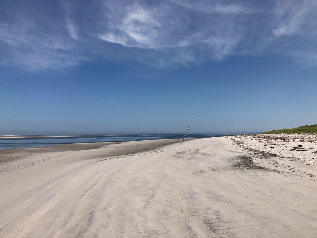 best beaches near boston: wingaersheek