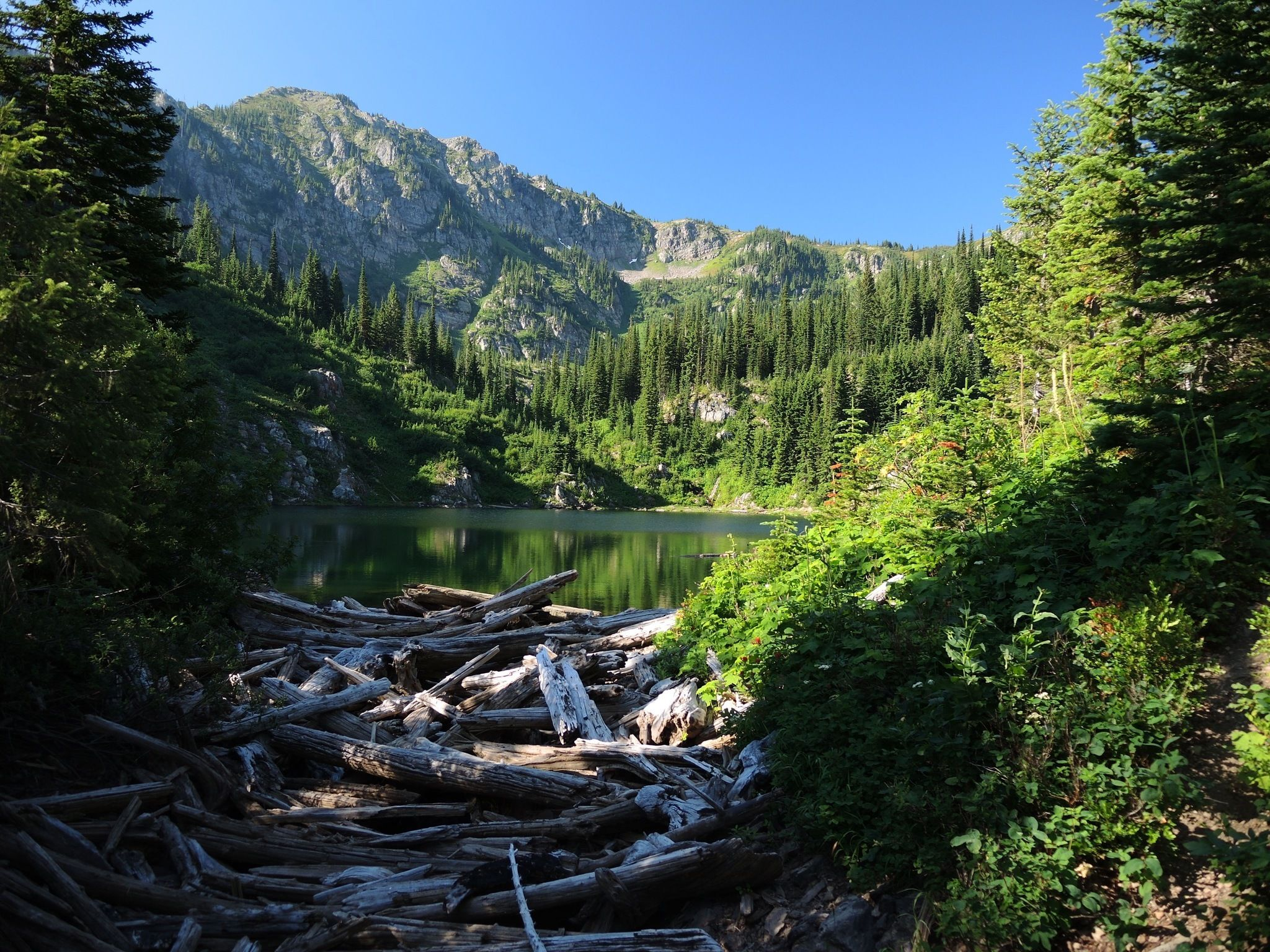 Escape The Entire World On The Secluded Lone Lake Trail In Idaho