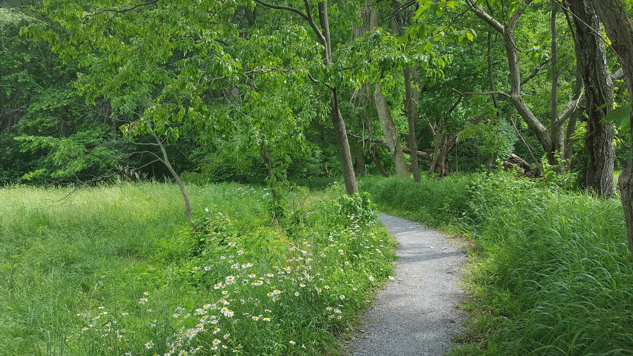 This Scenic Hilly Hike In Delaware Will Surely Keep You In Shape