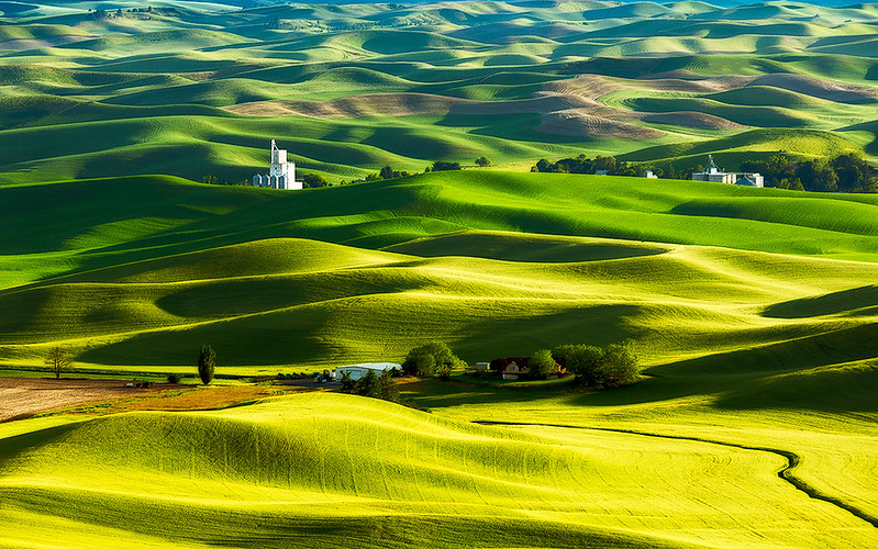 The Palouse Was Named The Most Beautiful Place In Washington And We Have To Agree