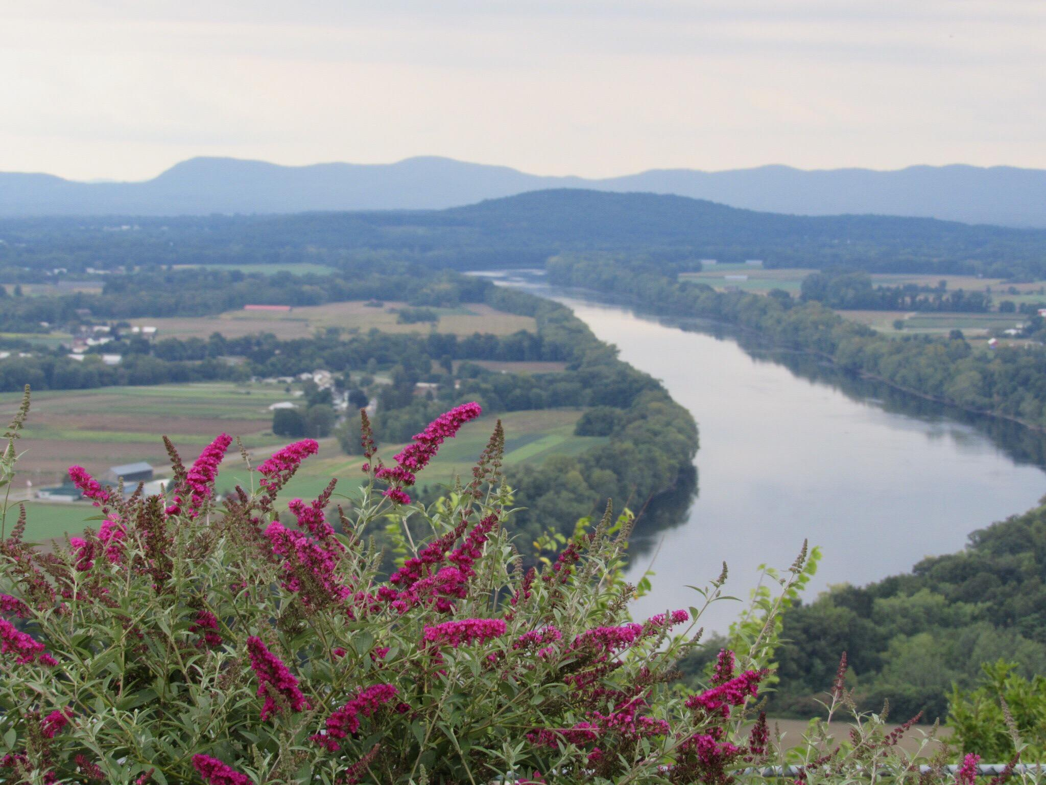 Walk Along Some Of The Tallest Trails In Massachusetts At Mount Sugarloaf State Reservation