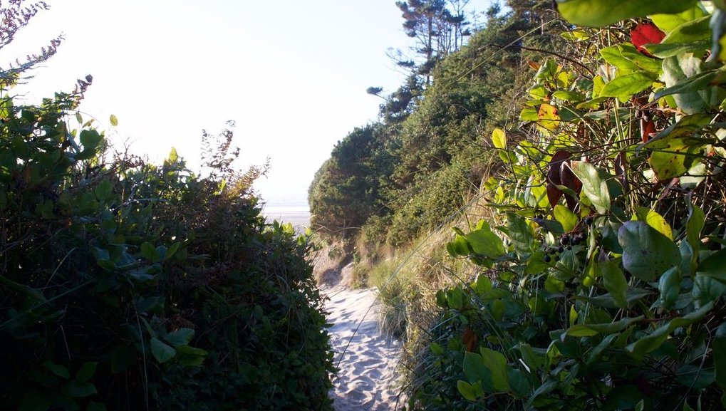 Follow A Sandy Path To The Waterfront When You Visit Hobbit Beach In Oregon