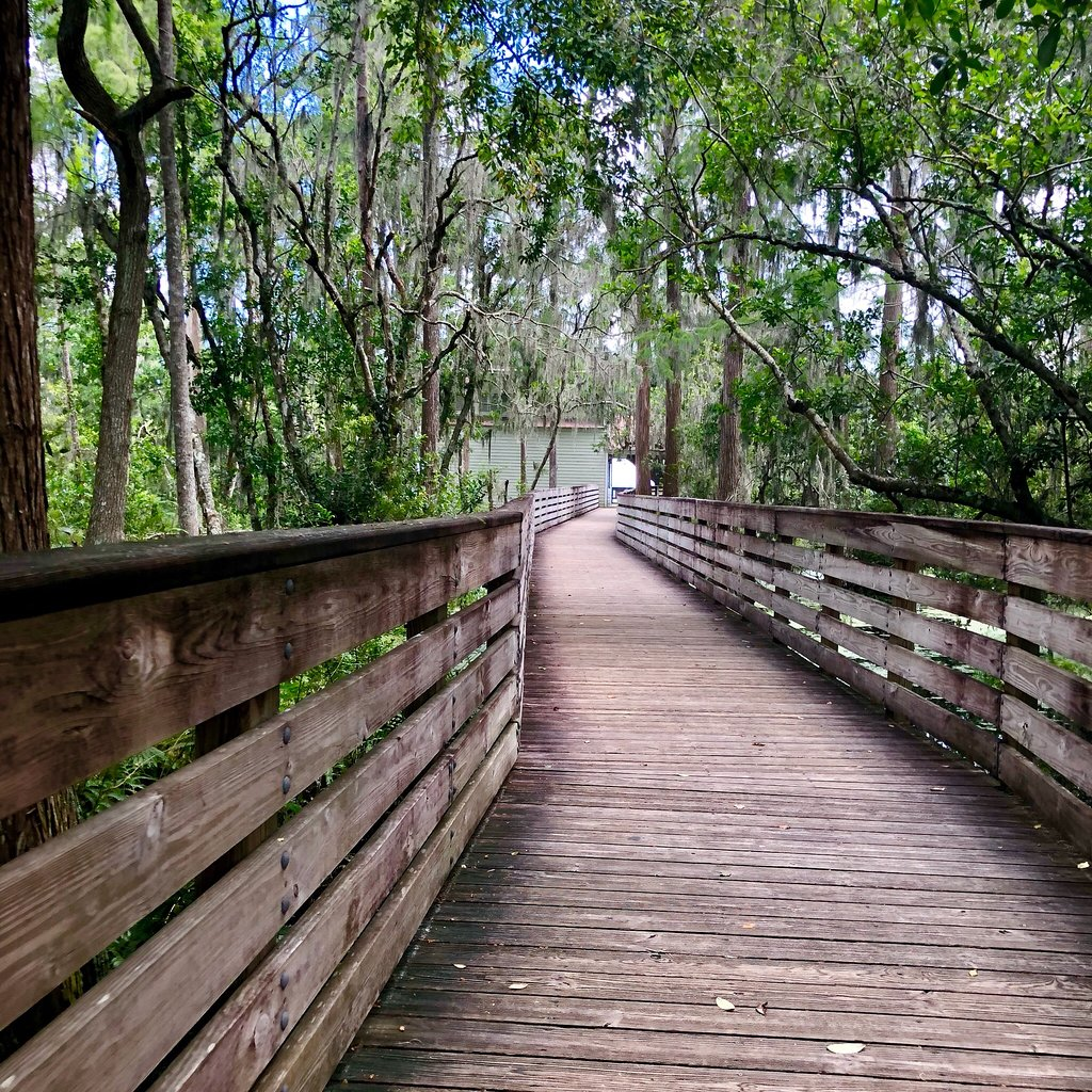 This Easy, 2.6-Mile Hike In Florida Will Lead You Straight To The Shores Of The Beautiful Hammond Lake