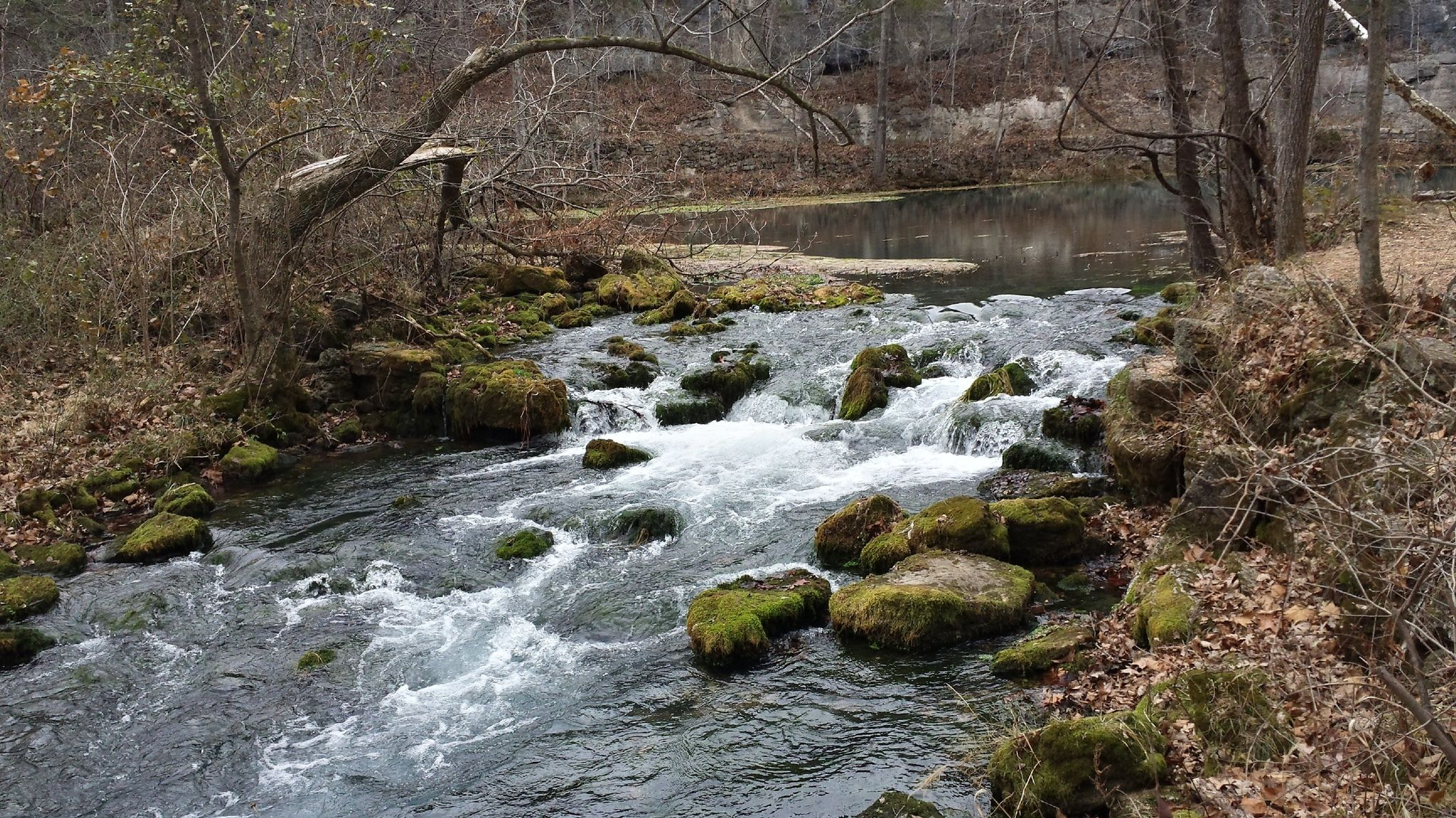 Alley Spring Overlook Trail Is A Beginner-Friendly Waterfall Trail In Missouri That's Great For A Family Hike