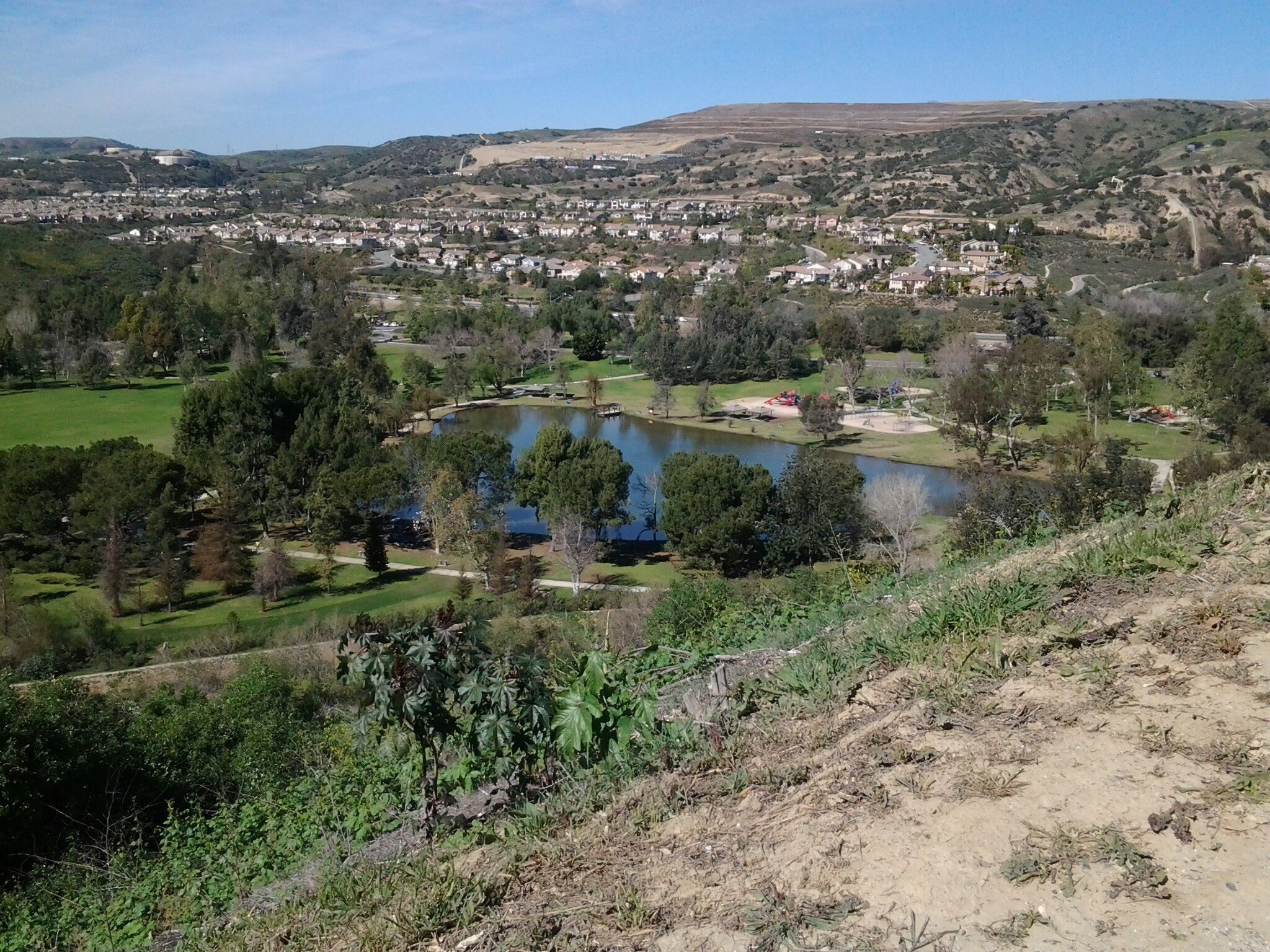 Carbon Canyon Nature Trail Might Be One Of The Most Beautiful Short-And-Sweet Hikes To Take In Southern California