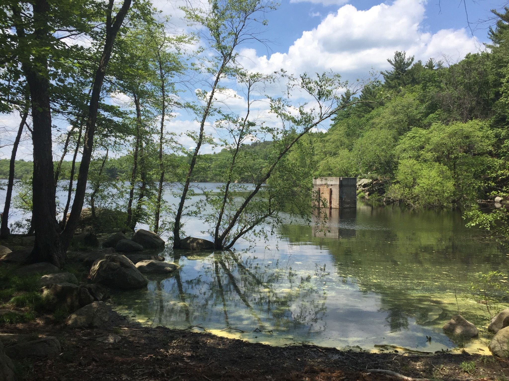 Trek Between Two Ponds On This Beautiful Loop Hike In Massachusetts' Lynn Woods Reservation