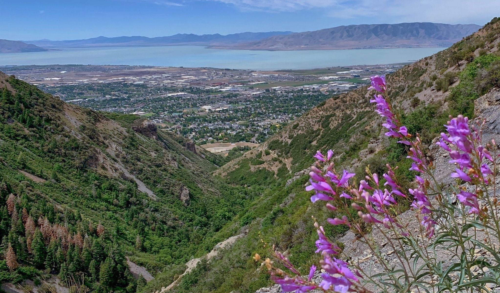 The Utah Valley Views And Waterfall Make The Difficult Grove Creek Spring Hike Worth It