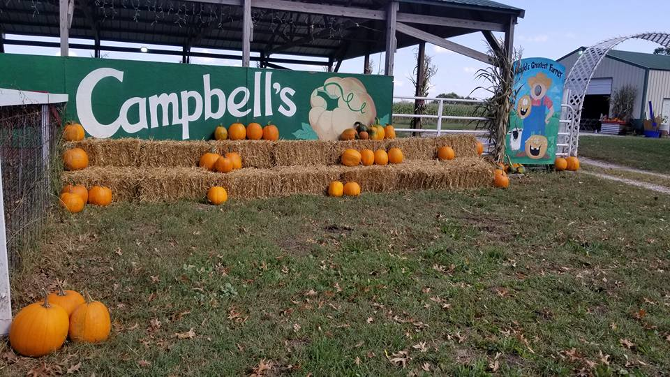 Fall Into The Season With A Weekend Trip To Campbell's Maze Daze Pumpkin Patch In Missouri