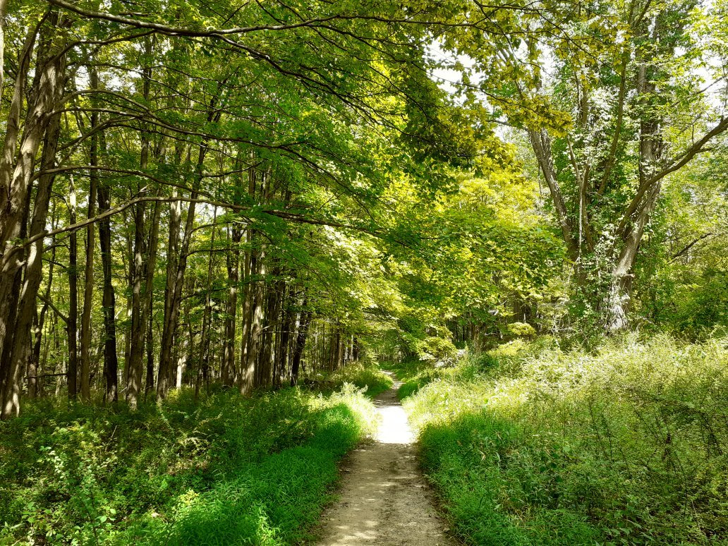 Explore The Hundreds of Beautiful Trails In New York's Harriman State Park