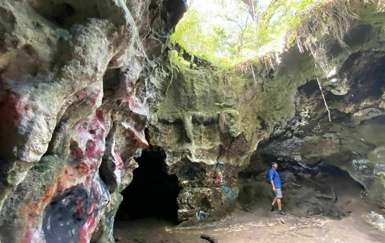 The Dames Cave Trail Is A Challenging Hike In Florida That Will Make Your Stomach Drop