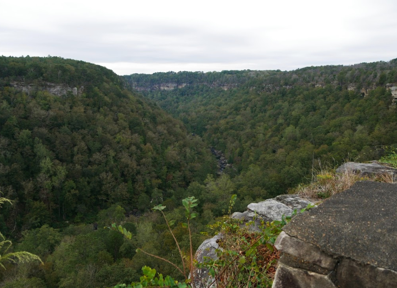 Off The Beaten Path In Little River Canyon National Preserve, You'll Find A Breathtaking Alabama Overlook That Lets You See For Miles