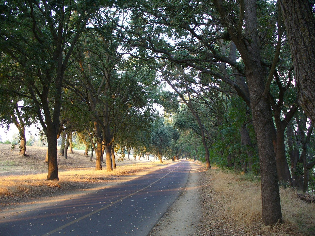 Jedediah Smith Trail Is A 32-Mile Path In Northern California That Winds Alongside Lakes, Rivers, And Parks