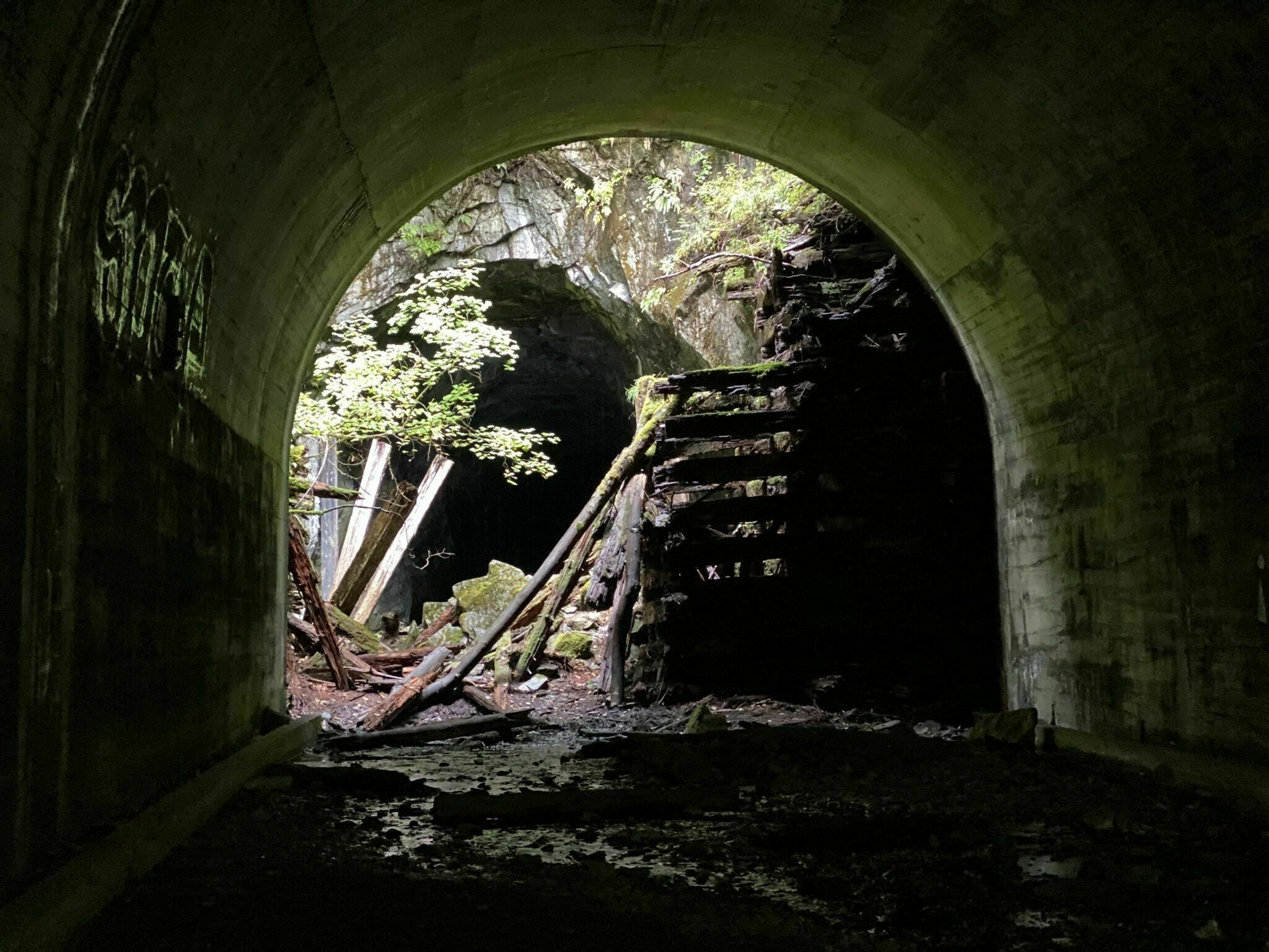 This Railroad Hike In Washington Was Named One Of The Scariest Haunted Hiking Trails In The U.S.