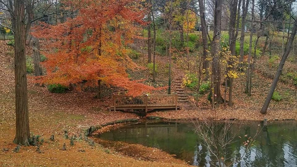 The Surprising Spot In Kentucky That's A Gorgeous Place To Walk All Year Long