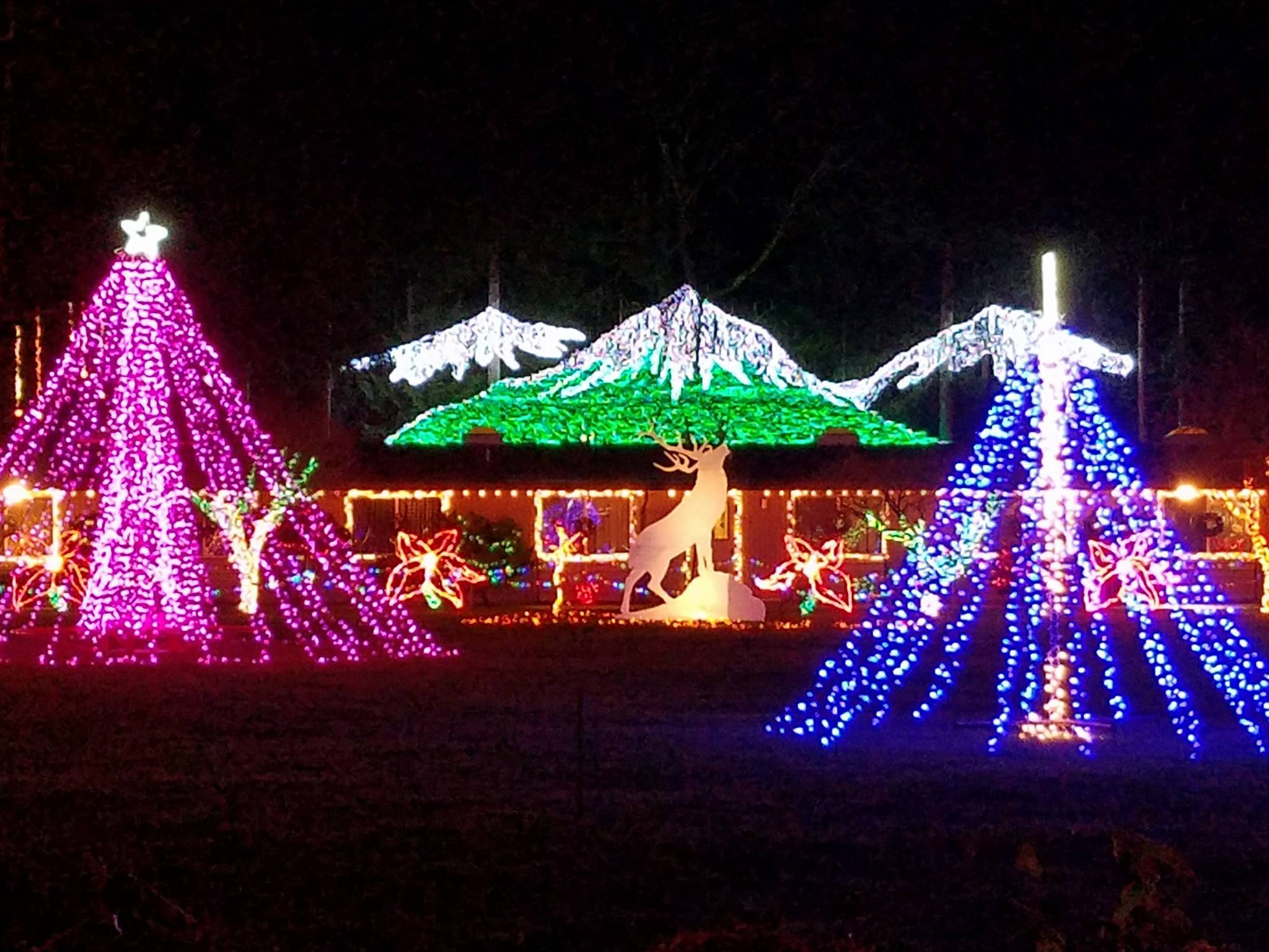 Washington's Enchanting Lights of Christmas Holiday Drive-Thru Is Sure To Delight