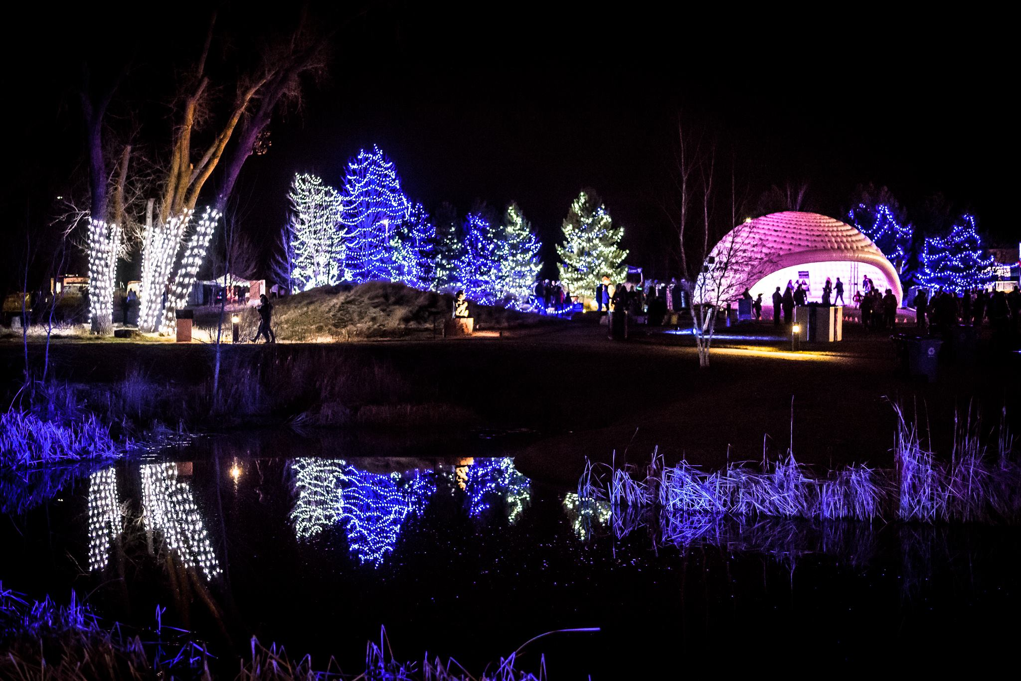 The Chapungu Sculpture Park In Colorado Is A Free Event With 80,000 Christmas Lights