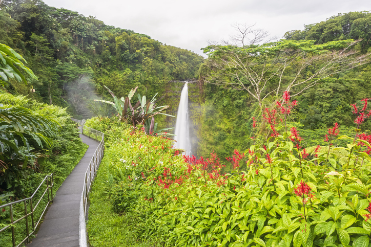 Akaka Falls Is A Scenic Outdoor Spot In Hawaii That's A Nature Lover's Dream Come True